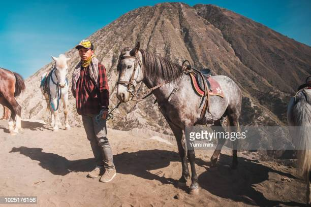 The horses available for service tourist at Mount Bromo