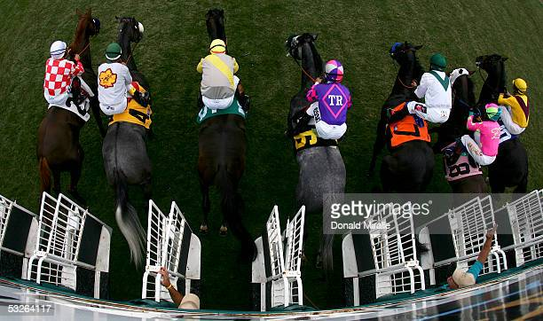 The horses break at the gate at the start of the 59th Running of the Oceanside Stakes during Opening Day at the Del Mar Thoroughbred Club on July 20...