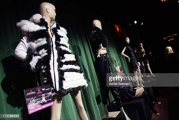 The Humane Society of the United States & The Art Institute's Fifth Annual Cool vs. Cruel Awards Ceremomy is held The Bowery Hotel on November 11,...
