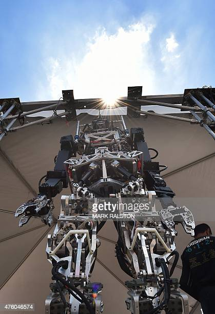 The humanoid robot named 'Thor' designed by students from Virginia Tech is on display during the finals of the DARPA Robotics Challenge at the...