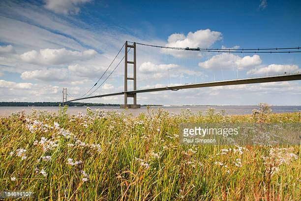The Humber Bridge in the UK. Set against a bank of wild flowers on the river Humber