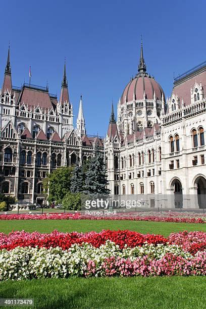 the hungarian parliament with flowers - sede do parlamento húngaro - fotografias e filmes do acervo