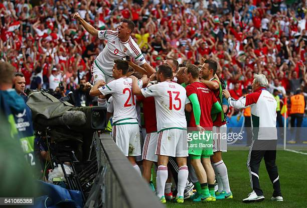 The Hungary team celebrate after Birkir Saevarsson of Iceland scores an own goal to make the score 11 during the UEFA EURO 2016 Group F match between...