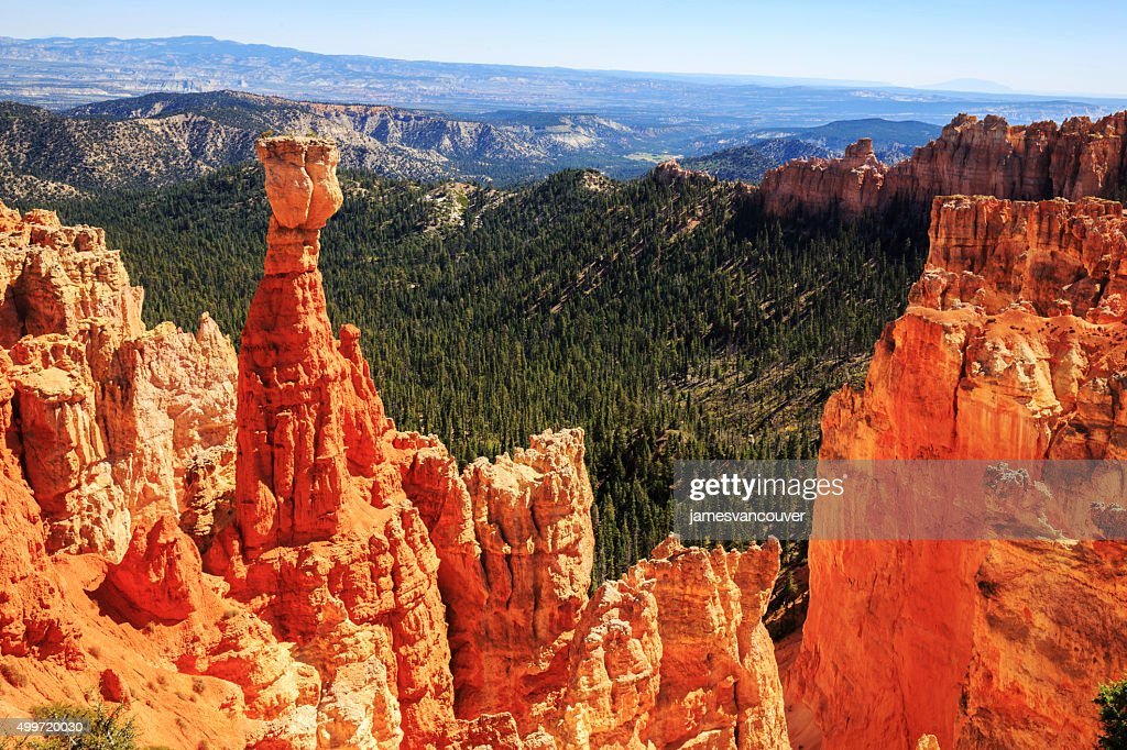 The Hunter Hoodoo In Bryce Canyon National Park Utah Stockfoto