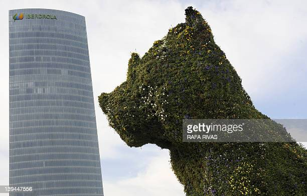 The Iberdrola Tower building is seen next to US artist Jeff Koons' sculpture 'Puppy' on February 21 in the Northern Spanish Basque city of Bilbao The...