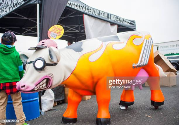 The Iconic Cow of Sonoma Raceway at the NASCAR Monster Energy Cup Series Toyota/Save Mart 350 at Sonoma Raceway in SonomaCA on June 25 2017