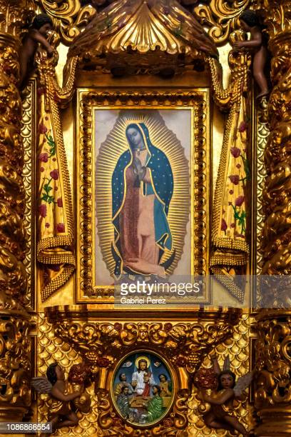 the iconic image of our lady of guadalupe - virgen de guadalupe fotografías e imágenes de stock