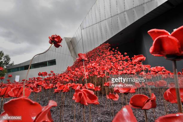 The iconic poppy sculpture 'Wave' opens at IWM North it's final presentation as part of 1418 NOW's UKwide tour of the poppies on September 7 2018 in...
