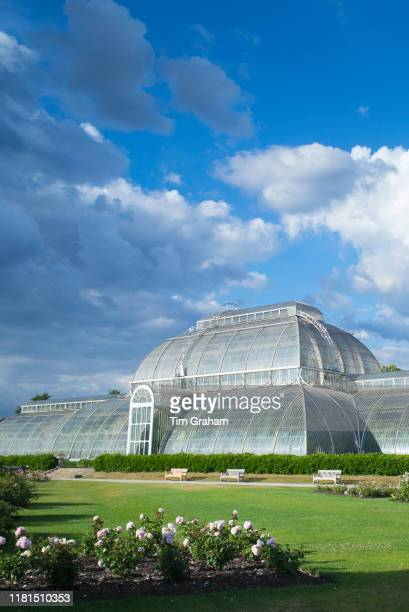 The iconic Temperate House exhibiting over 10000 plants in the world's biggest sculptural Victorian glasshouse at Royal Botanic Gardens at Kew...