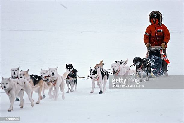 The Iditarod sled dog race in Alaska United States An 1800km long sled dog race A musher and his sled dogs on the frozen Yukon river running from...
