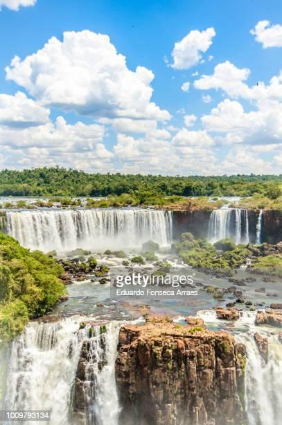 the iguaçu falls - フォスドイグアス ストックフォトと画像