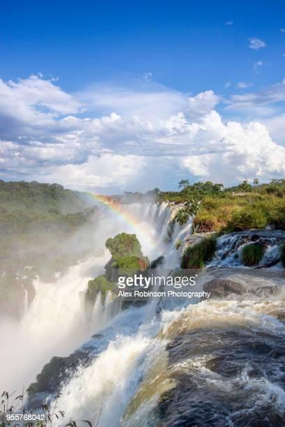 the iguazu falls on the border of argentina and brazil - イグアス滝 ストックフォトと画像