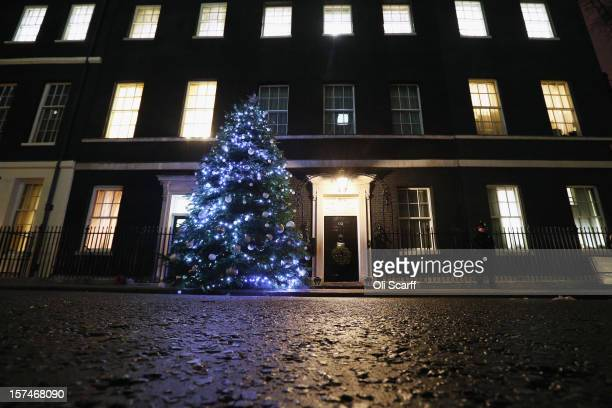 The illuminated Christmas tree outside Number 10 Downing Street on December 3 2012 in London England This year's Downing Street Christmas tree was...