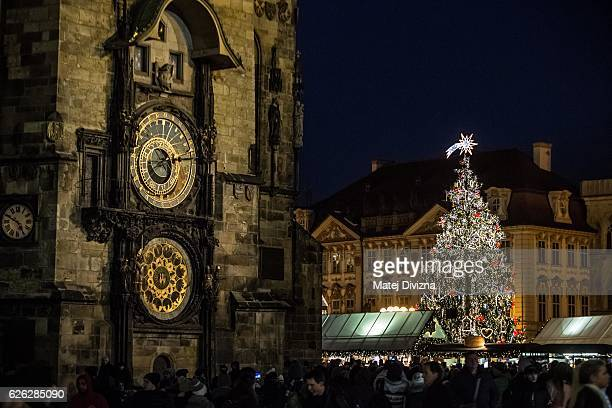 The illuminated Christmas tree stands at the Christmas market behind the Astronomical Clock at the Old Town Square on November 28 2016 in Prague...