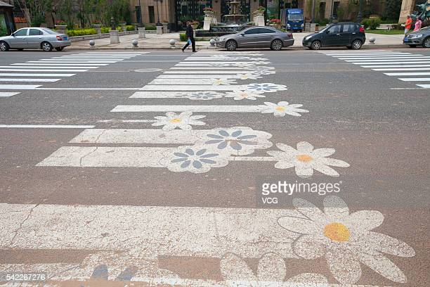 The image shows a zebra crossing painted chrysanthemums at the Shouchuang north road on June 22 2016 in Changchun Jilin Province of China