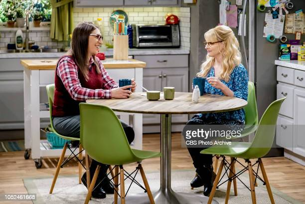 'The Imitation Perturbation' Pictured Amy Farrah Fowler and Bernadette When Wolowitz dresses up as Sheldon for Halloween Sheldon seeks retaliation at...