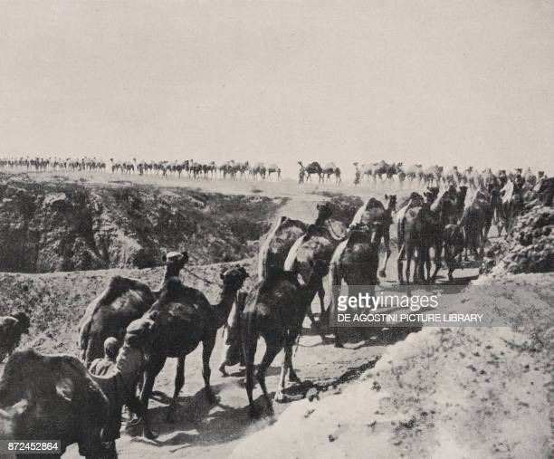 The Imperial Camel Corps returning from a water supply Palestine World War I from l'Illustrazione Italiana Year XLV No 3 January 20 1918