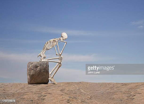 the importance of action - human skeleton stock photos and pictures