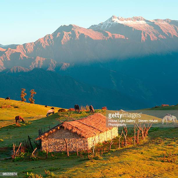 the indian himalayas at dawn above a shepherds hut - uttarakhand stock pictures, royalty-free photos & images