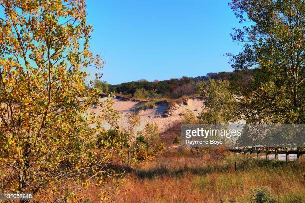 The Indiana Dunes National Lakeshore Park in Gary Indiana on OCTOBER 08 2011