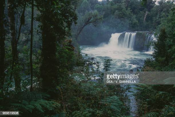 The Indio waterfall in the temperate rainforest Puyehue National Park Los Lagos Region Chile