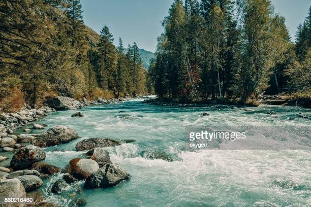 the inflow of kucherla river. altai mountains, ust-koksa, russia. - 河川 ストックフォトと画像