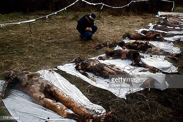 CONTENT] The interim Romanian government showed nineteen bodies found in a shallow grave as the victims of the dictatorship Bodies in the mass grave...