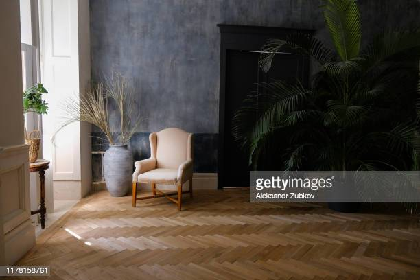 the interior of the living room with a beige armchair and a vase by the window and a palm tree near the door. - 寄木張り ストックフォトと画像
