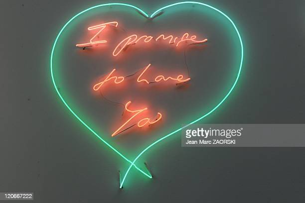The International Exhibition of Contemporary Art in the Grand Palais in Paris France on October 23 2010 a Tracey Emin's work of art called I promise...
