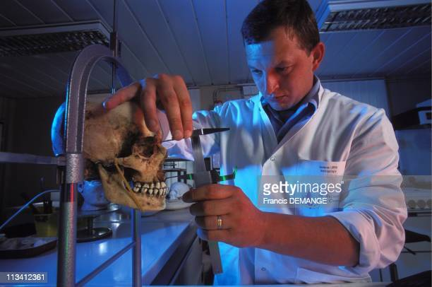 The IRCGN On June 6th 1995 Antrhorpology Department The Anthropometric Study Of A Skull