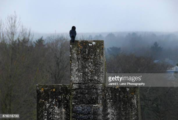 the irish raven - ominous stock photos and pictures