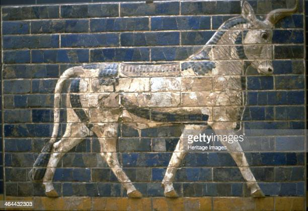 The Ishtar Gate Babylon Relief of bull 6th century BC Found in the collection of the Pergamon Museum Berlin