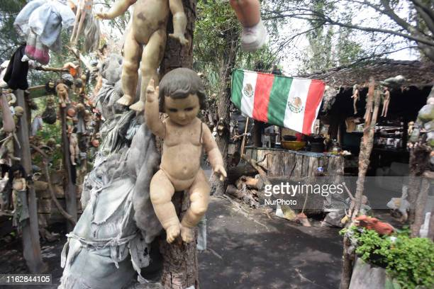 The Island of the Dolls is a place that only Don Julián Santana Barrera inhabited for more than 25 years in a chinampa of Xochimilco and that today...
