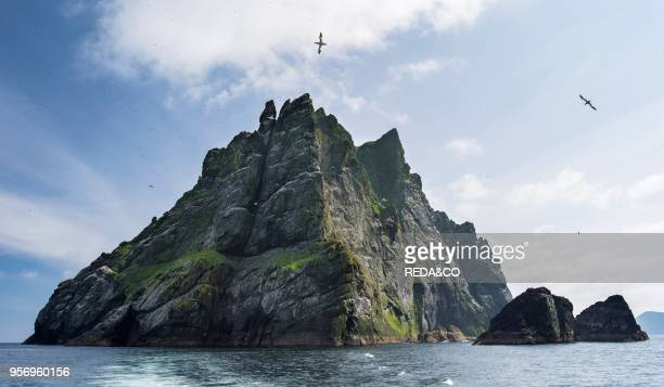 The islands of St Kilda archipelago in Scotland. Island of Boreray having the largest northern gannet colonies worldwide. It is one of the few places...