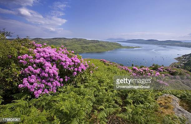 The Isle of Arran as seen from above Tignabruaich Kyles of Bute Argyll Scotland United Kingdom