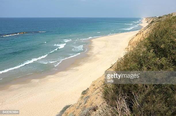 the israeli coast at ashkelon, looking northward - アシュケロン ストックフォトと画像