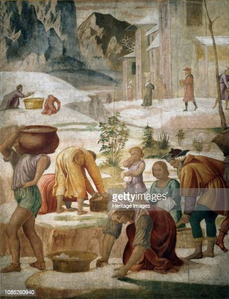 The Israelites gathering Manna 15091510 Found in the Collection of Pinacoteca di Brera Milan