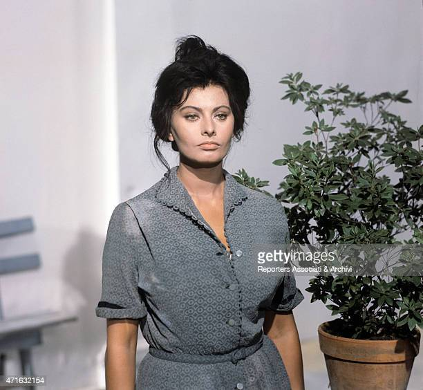 'The Italian actress Loren Sophia on the set of the film Yesterday today and tomorrow in the first episode Adelina by Eduardo De Filippo 1963 '