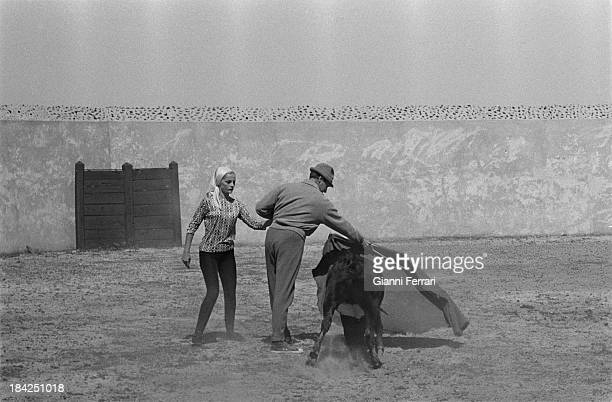 The Italian actress Virna Lisi on the farm æVilla PazÆ of the bullfighter Luis Miguel Dominguin during a private bullfight with a small bull Cuenca...