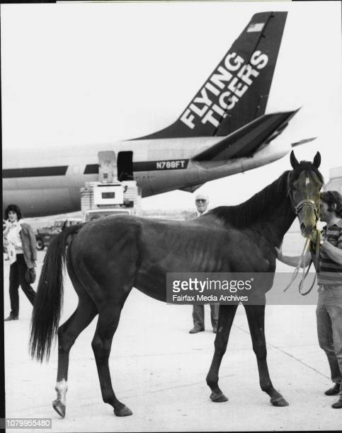 The Italian Derby winner Garrido a with Garrido is owner John Tonkin and Laurie Morgan. .