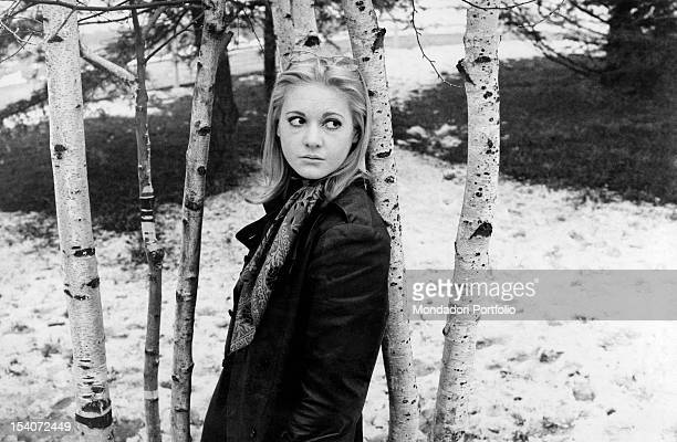 The Italian singer Anna Identici leaning on a tree 1969