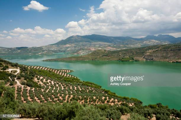 The Iznajar reservoir near Antequera in Andalucia, Spain.