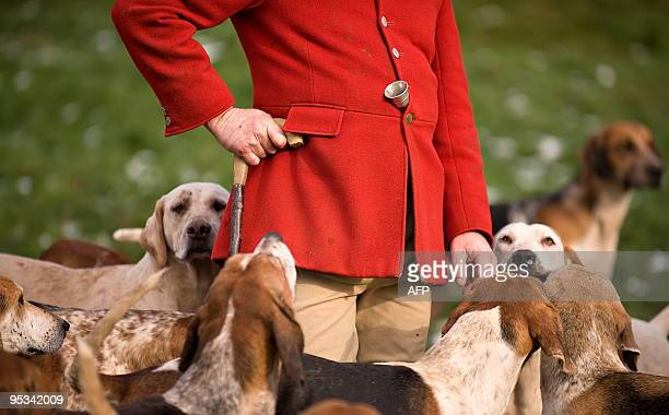 The jacket of an unidentified man is pictured as he stands among dogs during a hunting party for the traditional Boxing Day hunt near Barlow in...