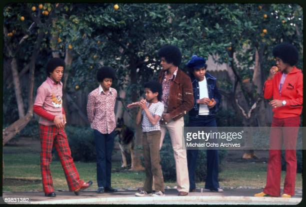 The Jackson brothers in the backyard of their home Los Angeles 1972 From left to right Marlon Jackson Michael Jackson Randy Jackson Jackie Jackson...