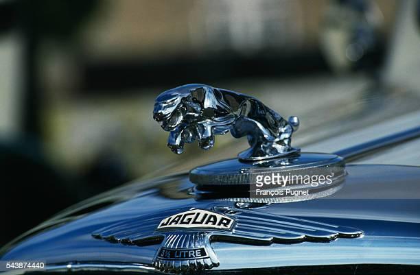The Jaguar emblem