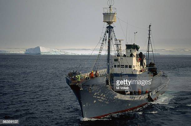 The Japanese whaling vessel Kyo Maru Number 1 during a scientific research mission in the Antarctic 1993