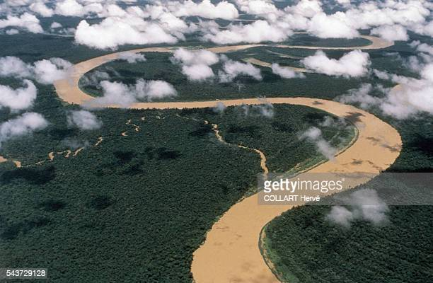 The Japura river on the border between Brazil and Colombia the river meanders through virgin forest and flows into the Solimoens the Brazilian...