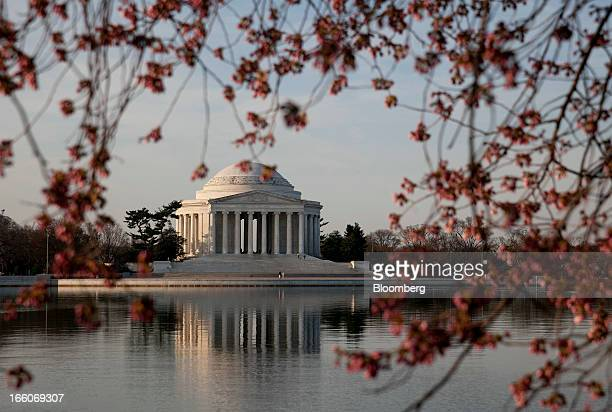 The Jefferson Memorial sits next to the Tidal Basin behind cherry trees blossoming in Washington DC US on Monday April 8 2013 Gifts from Japan in...