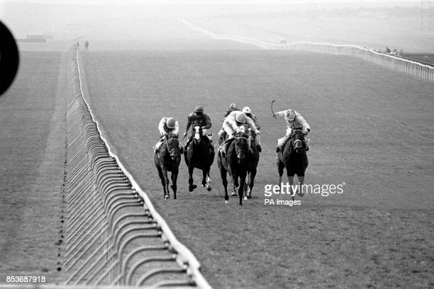 The Jockey Club Stakes at Newmarket Gay Lemur with Geoff Baxter riding was the eventual winner followed by Lester Piggott on Jupiter Island then Joe...