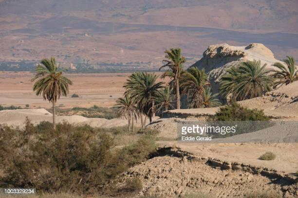 The Jordan Valley, Israel